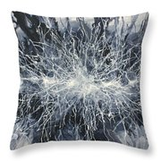 ' Visions Of One' Throw Pillow