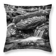 Waterfall Great Smoky Mountains Painted Bw    Throw Pillow