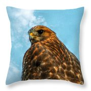 What Are You Looking At Red Shoulder Hawk Throw Pillow