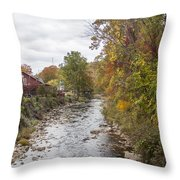 White Laural Creek- Mid-town Damascus Throw Pillow