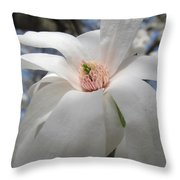 Willowy Magnolia Blossom Throw Pillow