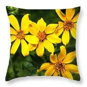 Yellow Texas Wildflowers Throw Pillow