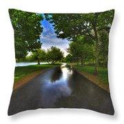 001 After The Rain At Hoyt Lake Throw Pillow