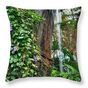 001 Falling Waters For The Cactus Lover In You Buffalo Botanical Gardens Series Throw Pillow