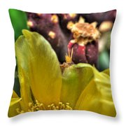 001 For The Cactus Lover In You Buffalo Botanical Gardens Series Throw Pillow
