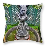 001 Fountain Buffalo Botanical Gardens Series Throw Pillow