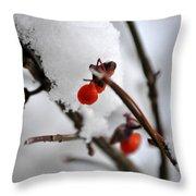 001 Frozen Berries Throw Pillow