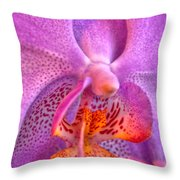 001 Orchid Summer Show Buffalo Botanical Gardens Series Throw Pillow