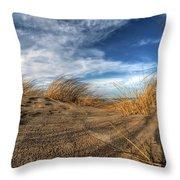 0010 Presque Isle State Park Series Throw Pillow