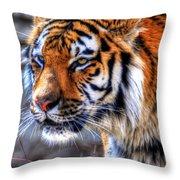 0013 Siberian Tiger Throw Pillow