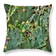 002 For The Cactus Lover In You Buffalo Botanical Gardens Series Throw Pillow