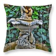 002 Fountain Buffalo Botanical Gardens Series Throw Pillow