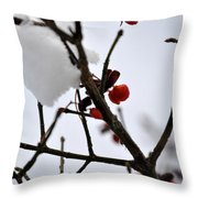 002 Frozen Berries Throw Pillow