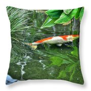002 Within The Rain Forest Buffalo Botanical Gardens Series Throw Pillow