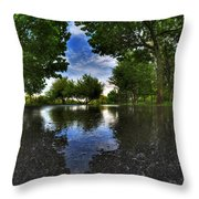 003 After The Rain At Hoyt Lake Throw Pillow