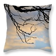 003 Cotton Candy Skies With A Lil Snow Throw Pillow