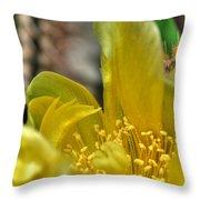 003 For The Cactus Lover In You Buffalo Botanical Gardens Series Throw Pillow