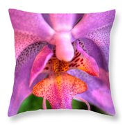 003 Orchid Summer Show Buffalo Botanical Gardens Series Throw Pillow