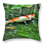 003 Within The Rain Forest Buffalo Botanical Gardens Series Throw Pillow
