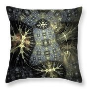 0039 Throw Pillow