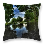 004 After The Rain At Hoyt Lake Throw Pillow