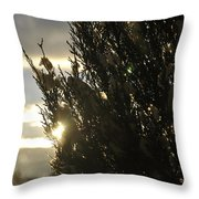 005 Peaking Winter Sunrise Throw Pillow