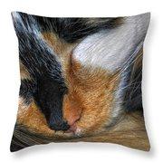 0053 Sleeping Cleo Throw Pillow