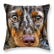 0054 Puppy Dog Eyes Throw Pillow