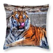 006 Siberian Tiger Throw Pillow