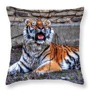 007 Siberian Tiger Throw Pillow