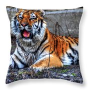 008 Siberian Tiger Throw Pillow