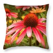 0086 Throw Pillow