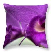 00c Buffalo Botanical Gardens Series Throw Pillow