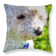 01 Portriat Of Wizard   Pet Series Throw Pillow