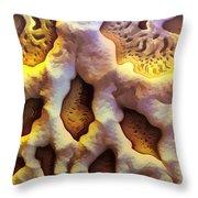 0128 Throw Pillow