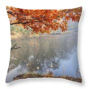 0132 Autumn At Starved Rock Throw Pillow
