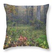 0134 Misty Meadow Throw Pillow