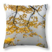 0135 Autumn Gold  Throw Pillow