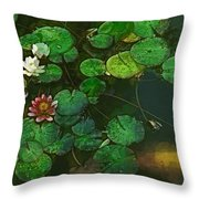 0148-lily -  Academic Sl Throw Pillow
