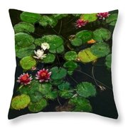0151-lily -   Neo Sl Throw Pillow