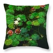 0151-lily - Academic Throw Pillow