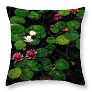 0151-lily - Acanthus Sl Throw Pillow