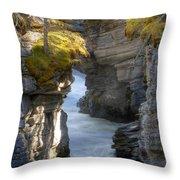 0191 Athabasca Canyon 2 Throw Pillow