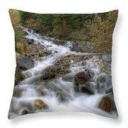 0192 Glacial Runoff Throw Pillow