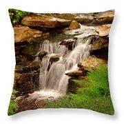 0199 Throw Pillow