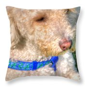 02 Portriat Of Wizard   Pet Series Throw Pillow
