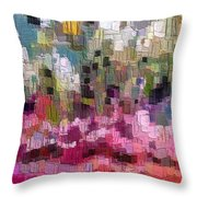 0226 Throw Pillow