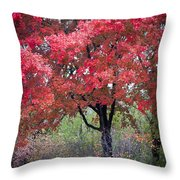0277 Blazing Red Throw Pillow