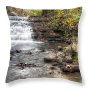 0278 South Elgin Waterfall Throw Pillow