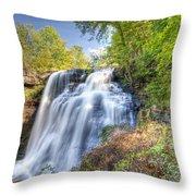 0302 Cuyahoga Valley National Park Brandywine Falls Throw Pillow